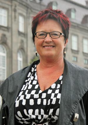 Socialdemokraternes nye IT-ordfører Karin Gaardsted lovede at svare på spørgsmål fra SAMDATA/HKs medlemmer.